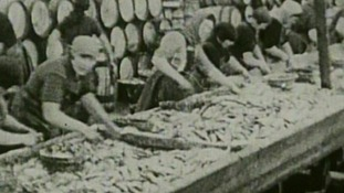 Women working in the herring industry