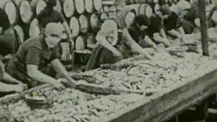 Women working in the herring industry