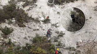 Tyler, a three-year-old Staffordshire bull terrier-cross, was rescued from 50 metres up a cliff face.