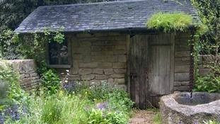 The naturally dry garden