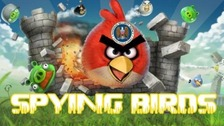 The hackers superimposed the NSA logo onto one of the angry bird characters
