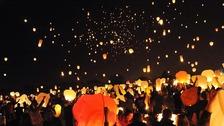 Chinese lanterns can harm animals.