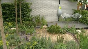 Climate Calm Garden