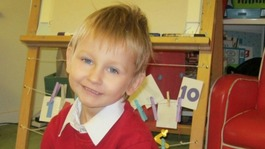 Daniel Pelka report highlights child protection failings