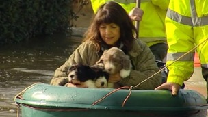 A woman carries three puppies to safety in Wraysbury, Berkshire