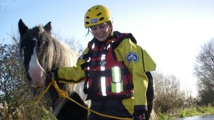 An RSPCA worker leads a horse to safety