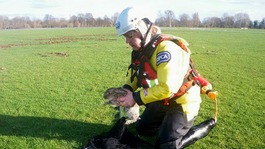 An RSPCA rescue worker holds a rabbit in a flooded field in Windsor, Berkshire