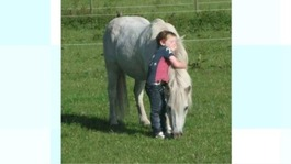 Missing pony found dead