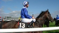 Horse racing may not return to Essex until 2014.