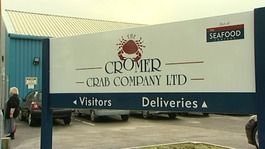 Cromer Crab company to close leaving more than a hundred redundant