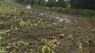 Farmers have been hit badly by the weather
