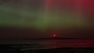 Coquet Island, Northumberland.