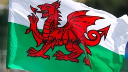 St David's Day celebrated across Wales and beyond