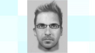 E-fit of the suspect.