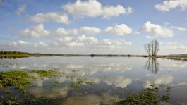 £20m flooding protection plan for Somerset Levels