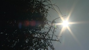 Changes in the Sun's activity may have led to natural climate change