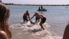 Grandfather wins payout for sacking after wrestling shark