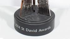 St David Award