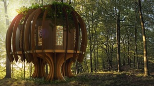 The idea behind the treehouse