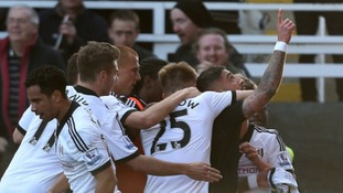 Ashkan Dejagah celebrates scoring Fulham's winner against Newcastle United.