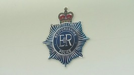 Police forces criticised for domestic abuse response