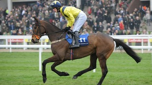 Pineau De Re was an early favourite with punters