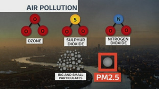 PM2.5 - found in tiny specks of matter - is especially hazardous.