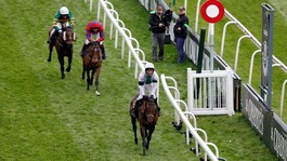 Somerset trained horse finishes 2nd in Grand National