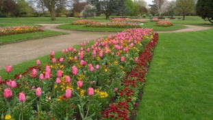 Warwick Park