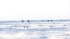 Runners compete in North Pole Marathon