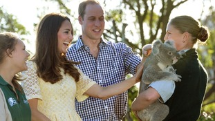 The Duke and Duchess of Cambridge meet Leuca the Koala.