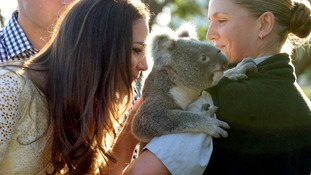 The Duchess of Cambridge meet Leuca the Koala.