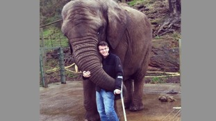 Stephen hugging a three and a half tonne elephant