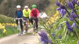 Cumbria cycling boom