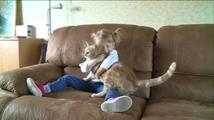 Girl left fighting for life after being licked by cat