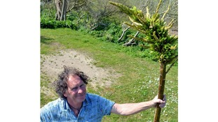 Ron Lyne with the rare Puya Chilensis 'sheep-eating' plant growing on his land.