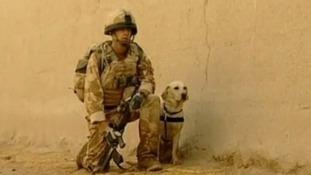 Lance Corporal Kenneth Rowe and army labrador Sasha.