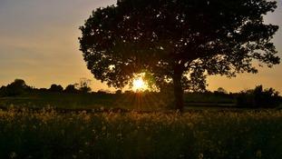 Norton Lindsey, Warwickshire