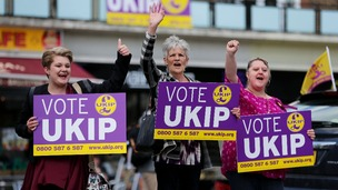 Ukip's swell of support saw them finish first in the European elections.