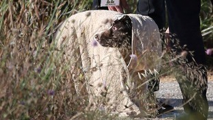 A British police handler cools down a sniffer dog after checking an area of scrubland during the search for evidence of Madeleine McCann.