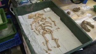 Lincoln Castle skeletons identified