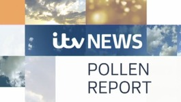 Monday's Pollen Report
