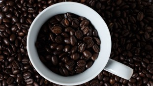 Waste coffee grounds could be used as 'sustainable fuel source' of biofuel for cars