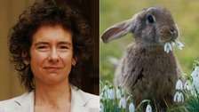 Novelist Jeanette Winterson caught, killed and ate a rabbit that had been eating parsley in her garden.