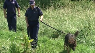 A police dog searching the area where  Nahid Almanea was murdered on Tuesday.
