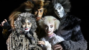 The Cats cast