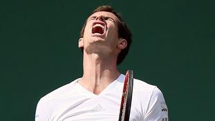 Andy Murray faced Bulgarian Grigor Dimitrov at Wimbledon today.