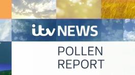 ITV Meridian Pollen Forecast