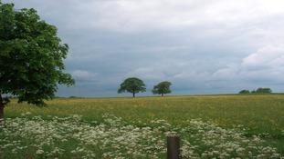 Shipley Park, Derbyshire