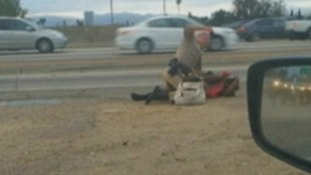 The Los Angeles police officer was filmed knocking the woman to the ground before repeatedly punching her.